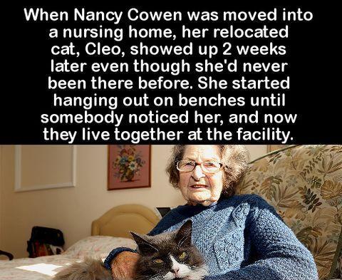 WHEN NANCY COWEN WAS MOVED INTO A NURSING HOME