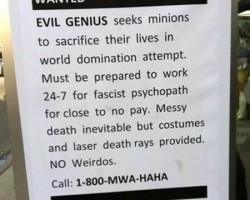 a98458_job-ad_1-no-weirdo