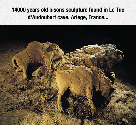 cool-Ariege-France-cave-bison