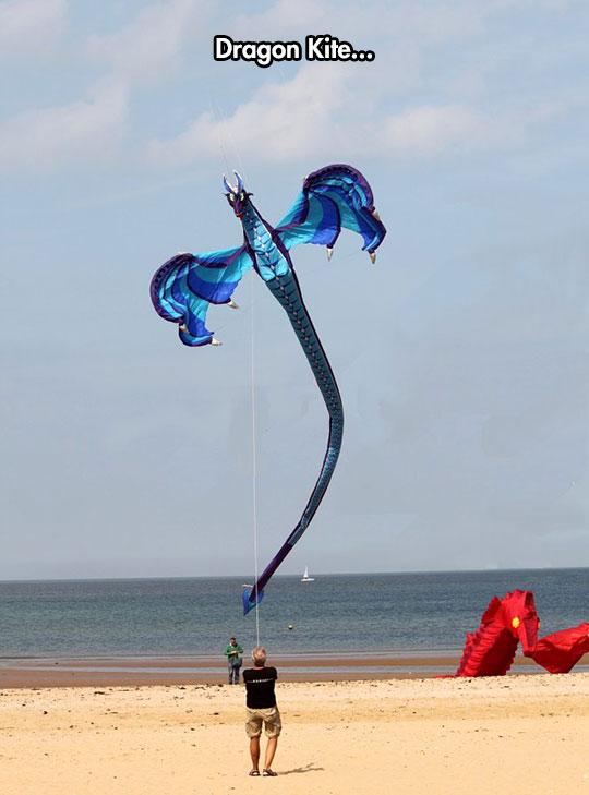 cool-dragon-kite-beach-flying