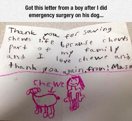 Vet Gets Unexpected Letter