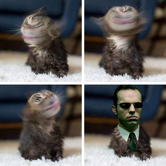 Agent Smith Has Gone Too Far This Time