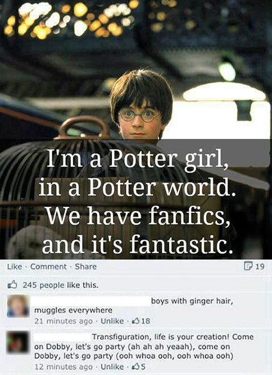 funny-Harry-Potter-fan-song-Facebook