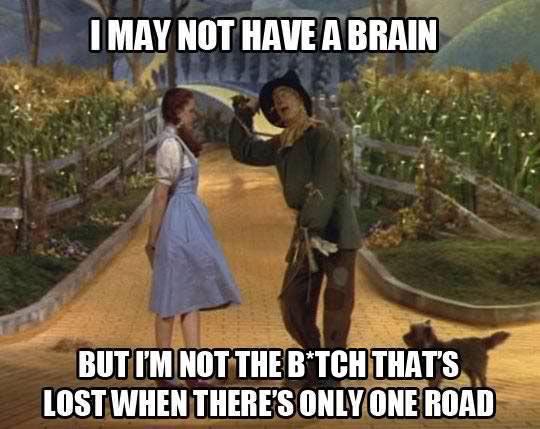 funny-Wizard-Oz-Dorothy-lost-road