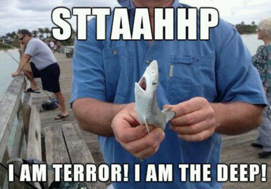 The New Jaws Prequel