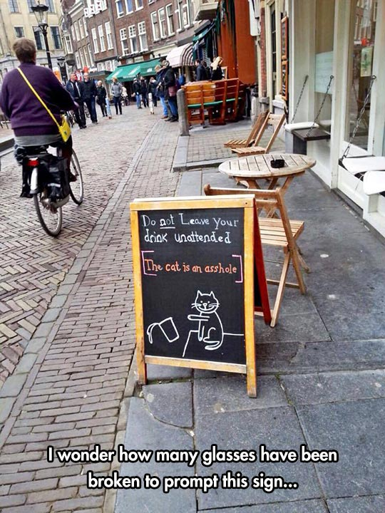 funny-bar-sign-cat-dropping-glass