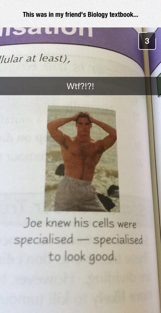 20120925133308427 biology book