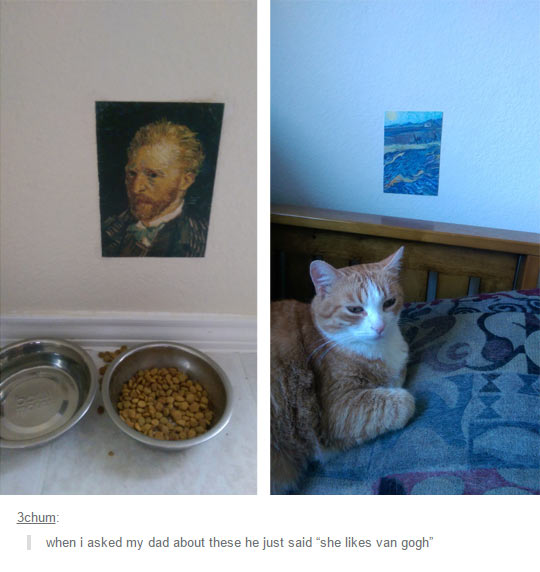This Cat Is Very Sophisticated