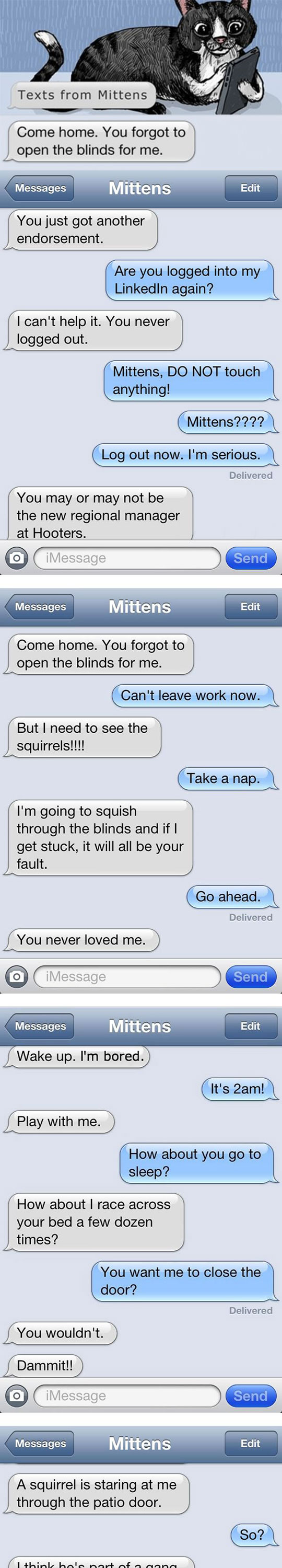 If Cats Can Text Their Owners