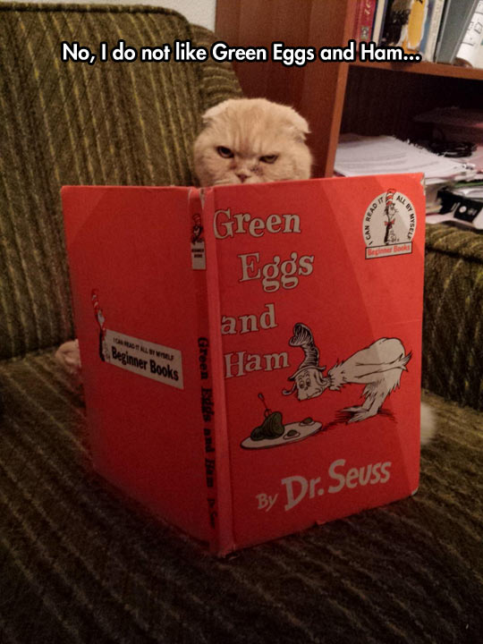 funny-cat-reading-Dr-Seuss-mad