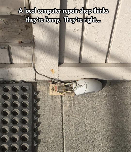 clever mouse trap funny - photo #15