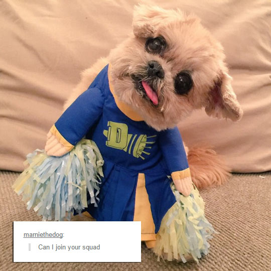 funny-dog-tongue-dress-cheerleader