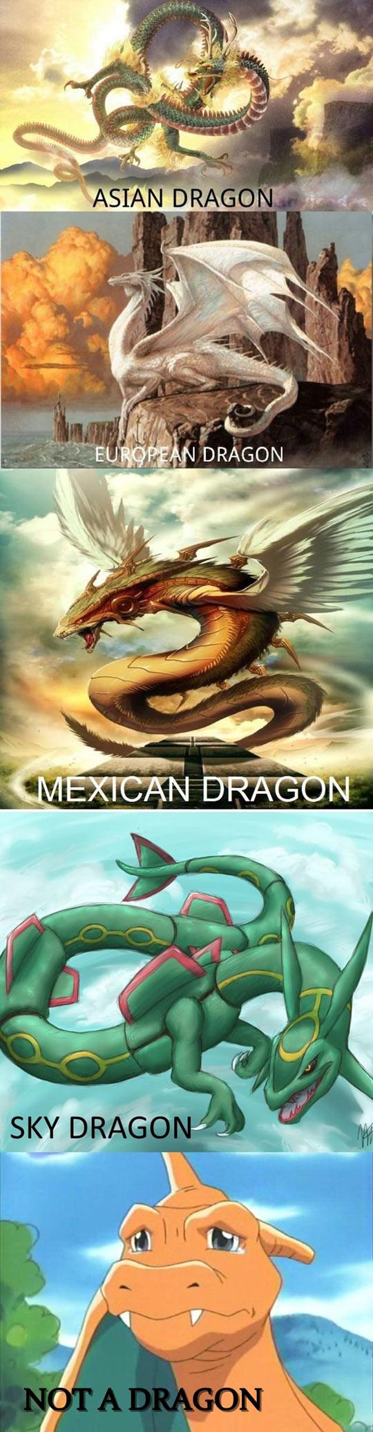 Dragon Debate Solved
