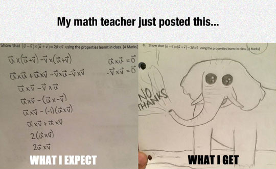funny-elephant-math-test-expectations