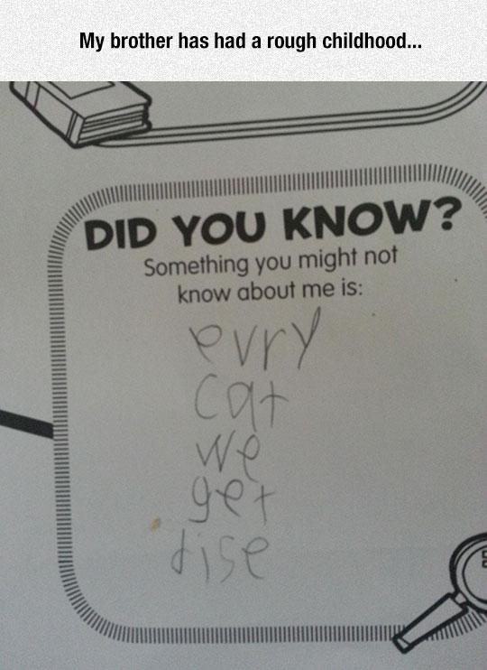 funny-homework-kid-dead-cat