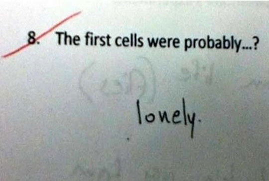 funny-lonely-cells-test-answer