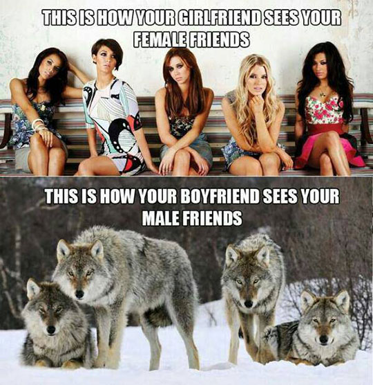 funny-male-female-friends-wolves