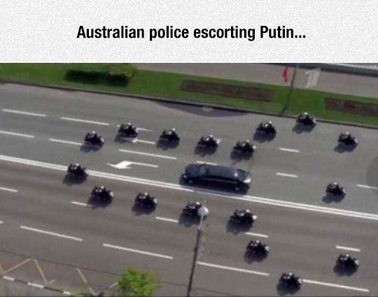 Alright Guys, The Putin Formation!