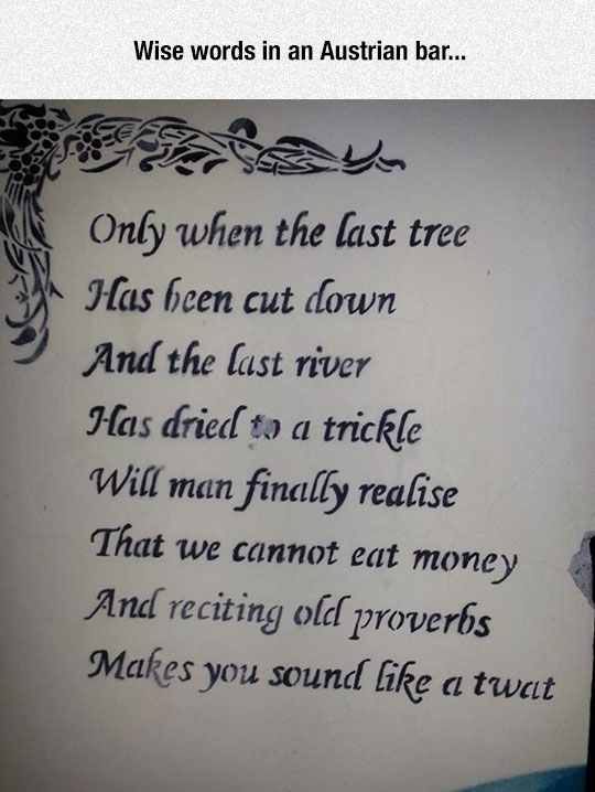 funny-proverb-last-tree-river