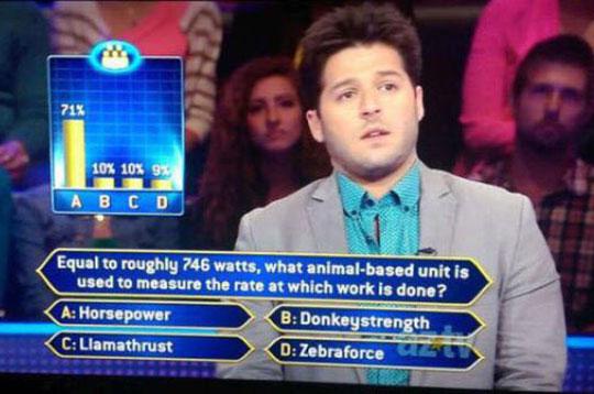 C. Llamathrust. Final answer.