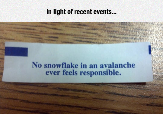 Snowflake In An Avalanche