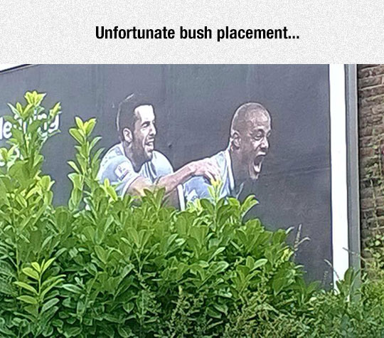 funny-soccer-ad-bush-blocking