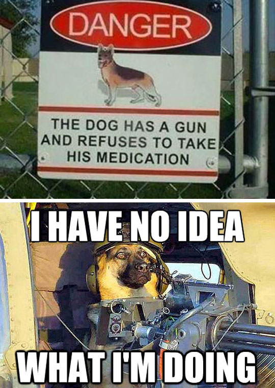 funny-warning-dog-sign-weapon
