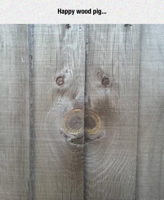 funny-wood-pig-face-shape