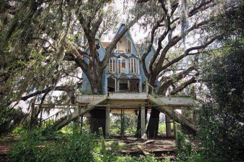 An abandoned Victorian tree house in Brooksville Florida.