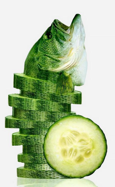 Animal Food Hybrids11