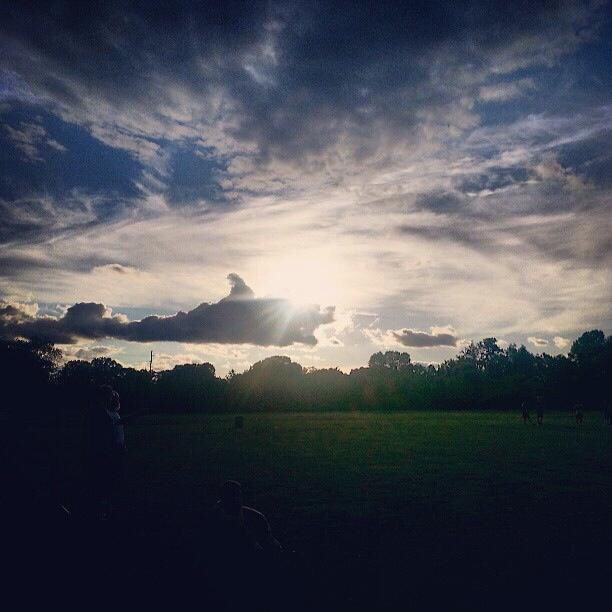 Shark cloud eating other clouds