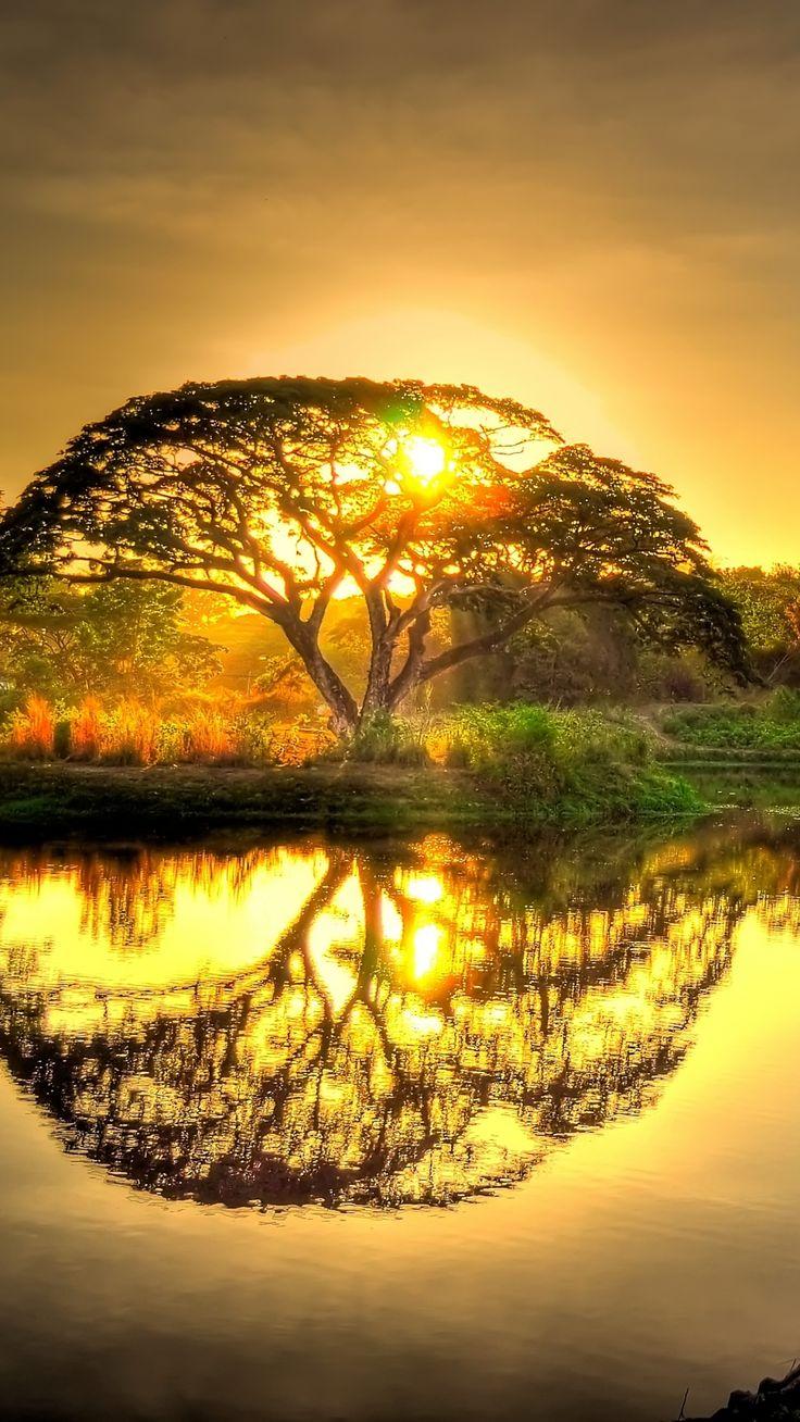 Sunset with Amazing reflection.