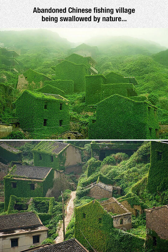 cool-green-building-abandoned-village