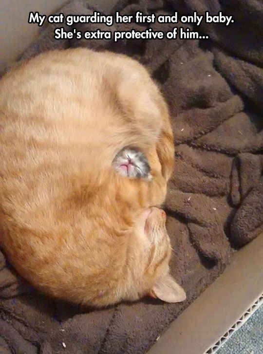 Motherly Love Hug