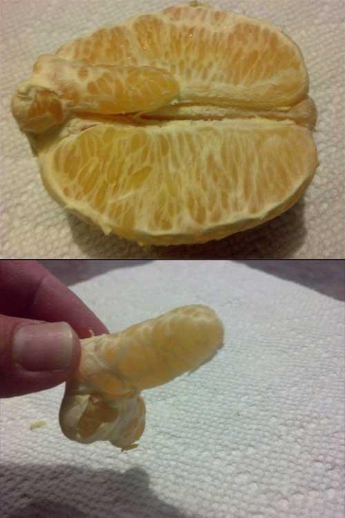 dirty-mind-orange-penis