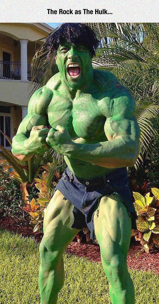 funny-Hulk-Rock-disguised-Dwayne