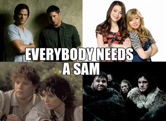 funny-Supernatural-LOTR-Sam-best-friend