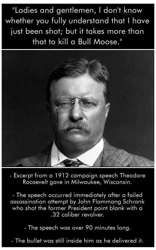 funny-Theodore-Roosevelt-speech-manly
