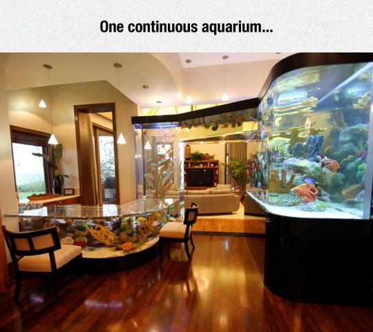 Neverending Aquarium