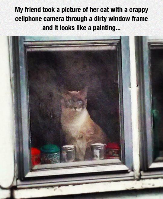 Work Of Art Cat