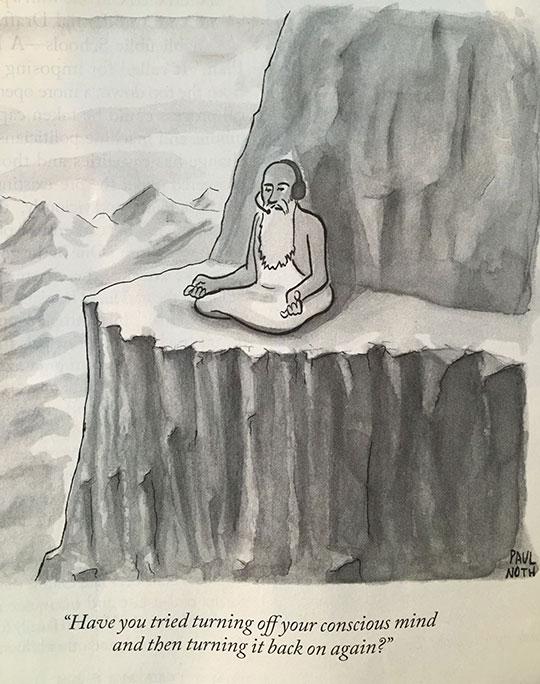 funny-cartoon-quote-mind-meditation