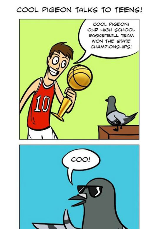Cool Pigeon Doesn