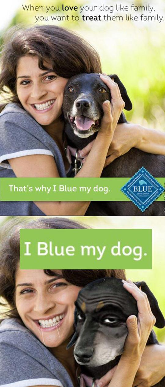 I Blue My Dog