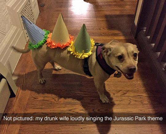 funny-dog-cosplay-Jurassic-Park