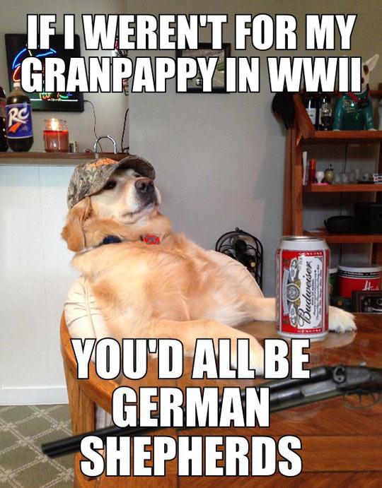 funny-dog-grandfather-sacrifices-German