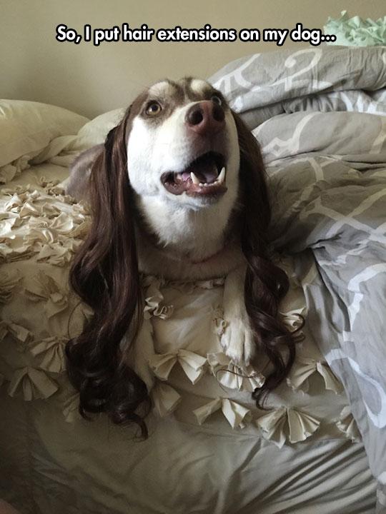 Now He Looks Fabulous
