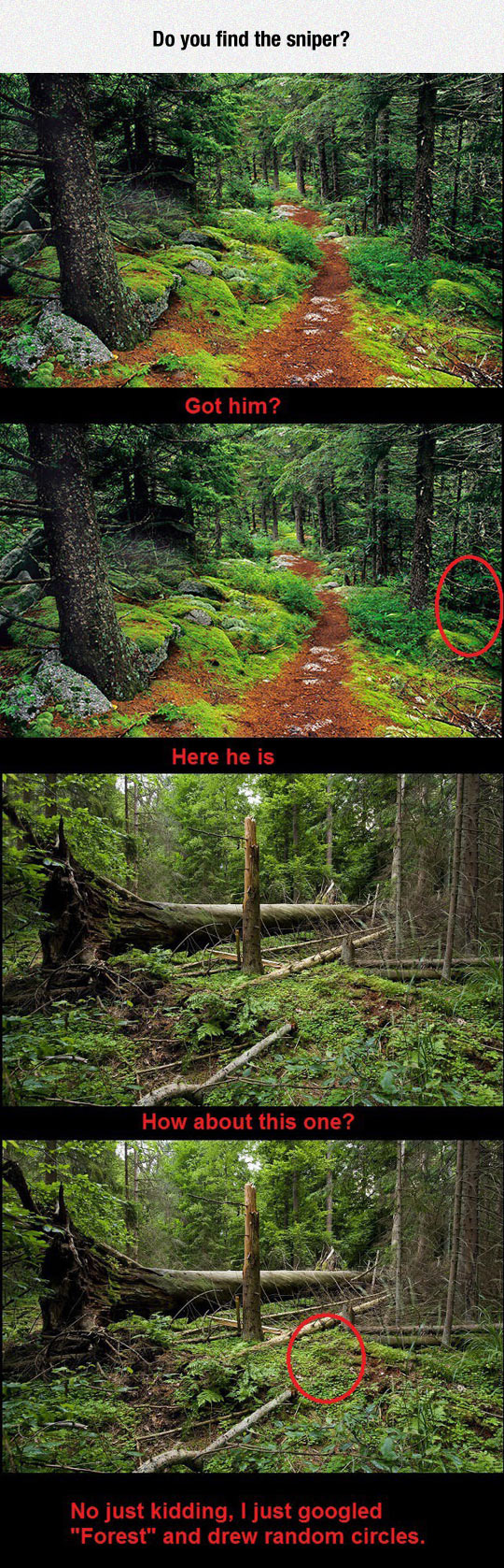 funny-forest-sniper-hidden-red-circle