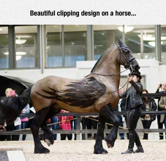 Fantastic Clipping Work