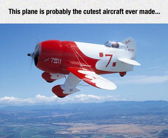 funny-little-plane-sky-cute