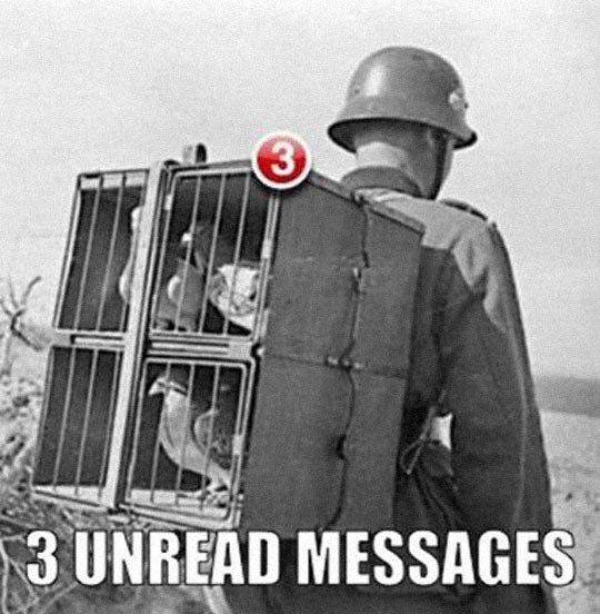 funny-old-picture-soldier-pigeons